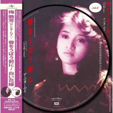 "Anita Mui 梅艷芳 Fantasy of Love + Marry Me Merry Me 10"" Picture LP 圖案膠"