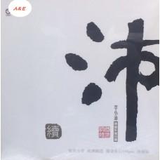 李小沛 錄音作品珍藏 續 黑膠 LP